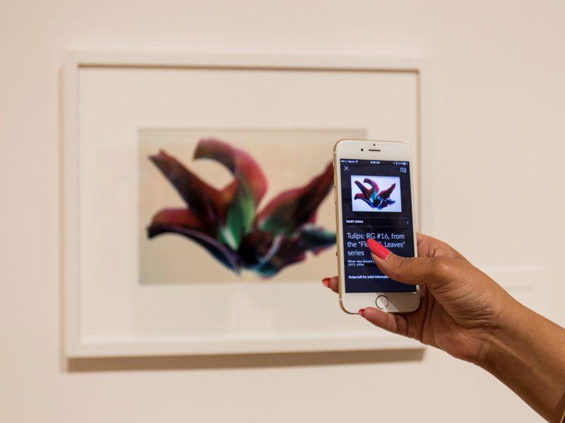 Smartify: l'app che riconosce in automatico le opere d'arte